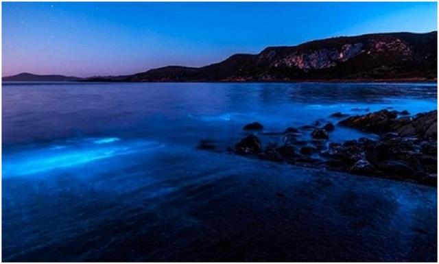 Bãi biển phía tây bắc đảo Tasmania, gần công viên quốc gia Rocky Cape, Australia