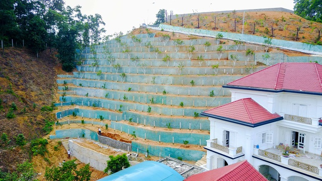 ... phía sau được bố trí trồng cây theo các bậc thang bám vào triền đồi.