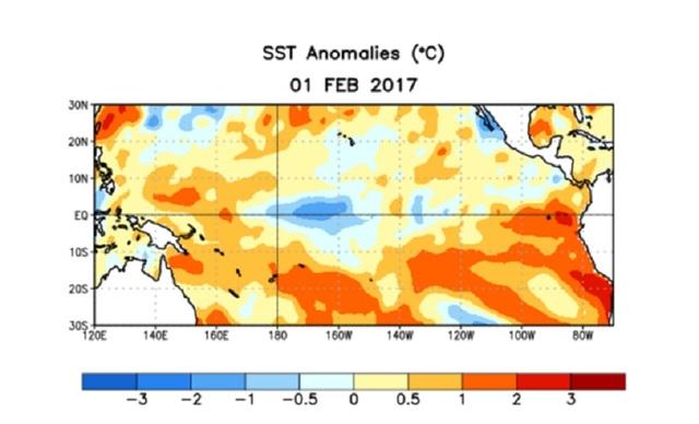 Bản đồ dị thường nhiệt độ nước biển vào tháng 2/2017 (nguồn: NOAA)