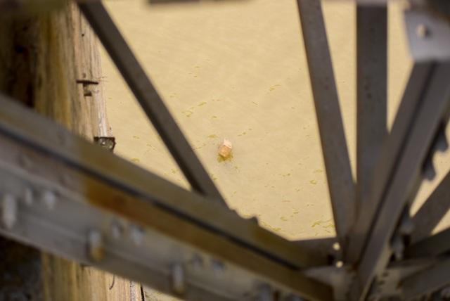 Quả bom được xác định có đường kính khoảng 55 - 60cm, dài 2 - 2,5m, còn nguyên ngòi nổ đầu và ngòi nổ đáy.