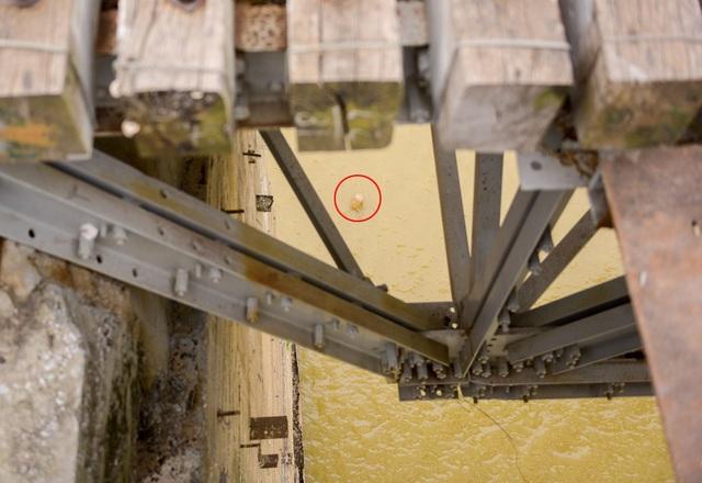 Sau khi phát hiện vật thể lạ, người dân đã buộc neo một can nhựa trên mặt nước để đánh dấu vị trí và báo cho cơ quan chức năng.