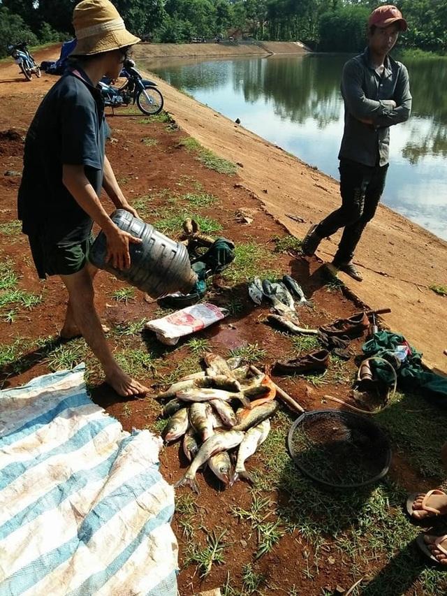 Người dân vớt cá chết dưới hồ lên