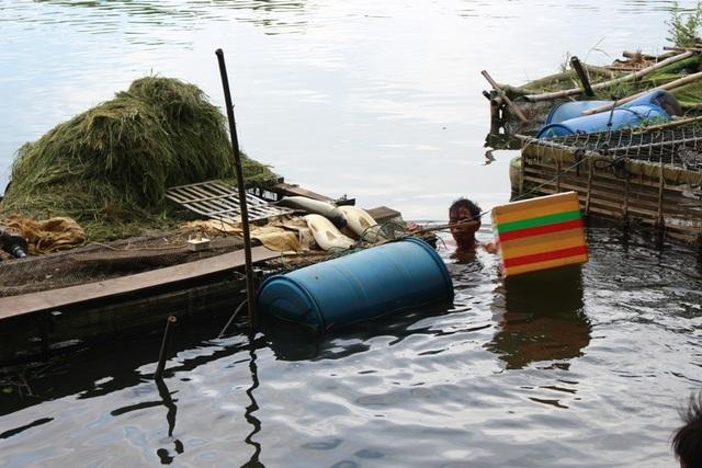 Đến đầu giờ chiều, mọi người vẫn còn vớt cá ra khỏi lồng