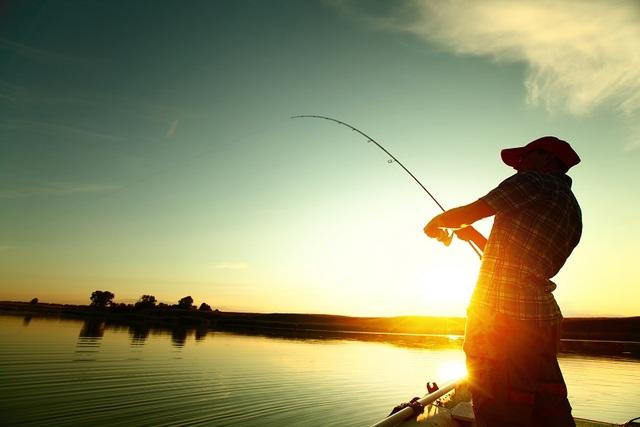 Tại Malaysia, có rất nhiều câu chuyện về người câu cá bắt gặp loài vật hiếm này.