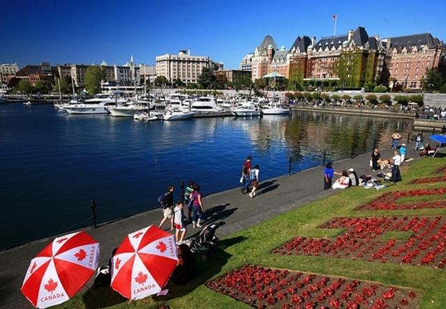 Định hướng nghề nghiệp tại Ngày hội Du học Victoria Canada - 1