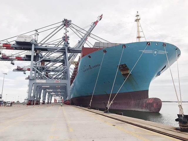 Margrethe Maersk trọng tải 194.000 tấn là tàu hàng lớn nhất từ trước tới nay cập cảng Việt Nam