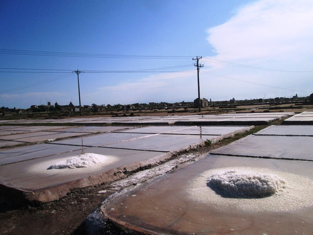 Những cánh đồng muối trắng toát đã đến lúc thu về của diêm dân Nam Định