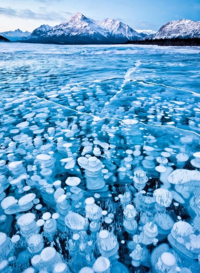 Hiện tượng bong bóng khí dưới mặt nước bị đóng băng đã tạo nên cảnh tượng hiếm có tại hồ Abraham, Canada.