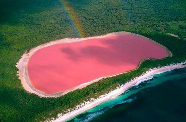 Hồ Hillier là một địa danh cực kỳ nổi tiếng trên thế giới, nhờ vào màu sắc khó tin mà làn nước ở nơi đây sở hữu. Trên thực tế, qua các kết quả phân tích, giới khoa học đã lý giải cho màu hồng của nước hồ hillier là do tự tồn tại của một loại tảo có tên là Dunaliella salina.