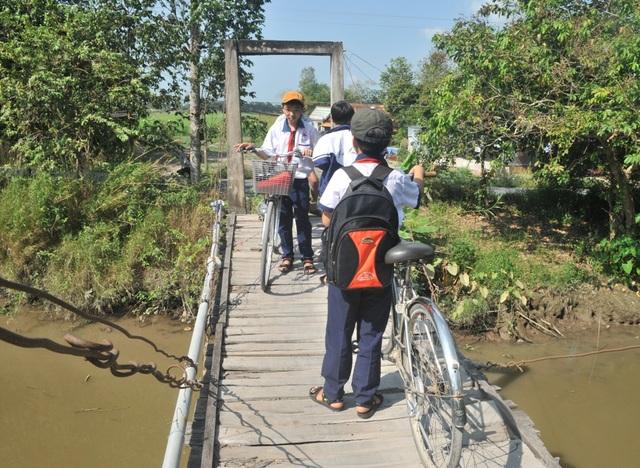 Cầu Cái Bàn cũ vừa nhỏ vừa xuống cấp... gây nguy hiểm cho các em học sinh nơi đây mỗi khi qua cây cầu này đến trường