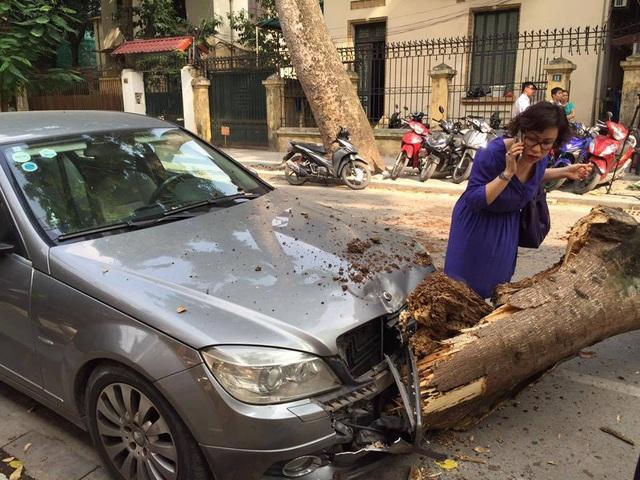 Một ô tô bị hư hỏng phần đầu xe.