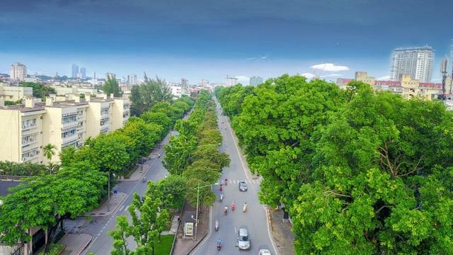 Sở Xây dựng Hà Nội vừa cấp phép đánh chuyển, chặt hạ 130 cây xanh trên đường Kim Mã. Công việc dự kiến sẽ được tiến hành từ 12/9.