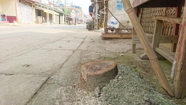 Thêm một xã ở Hà Nội bất ngờ chặt hàng loạt cây xanh - 5