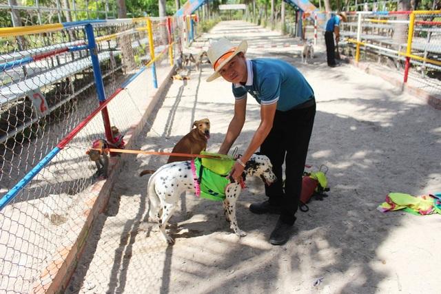 HLV chuẩn bị cho cuộc đua giữa các chú chó cõng trên lưng những chú khỉ