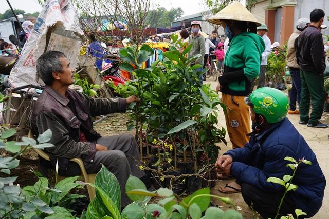 Dịp Tết đến Xuân sang, nhiều người dân chọn mua các loại cây ăn quả về trồng, cầu mong cho một năm mới khởi đầu với nhiều may mắn trong trồng trọt, chăn nuôi.