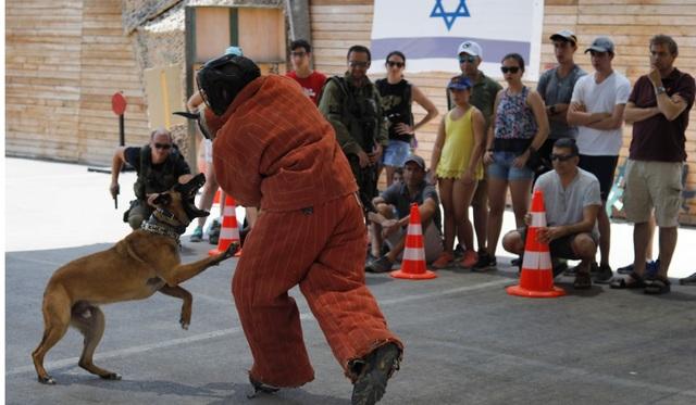 Năm 2003, một công ty ở Israel có tên Caliber 3 đã khai trương trung tâm huấn luyện ở Efra, phía nam Jerusalem, dành cho các nhân viên an ninh chuyên nghiệp. Tới năm 2009, khu huấn luyện đã chuyển đổi mục đích sử dụng, thành điểm thăm quan thu hút khách du lịch tới học các khóa học về vũ khí, tham gia các trò chơi vận động cũng như kỹ năng tự vệ qua môn võ Krav Maga của quân đội Israel.