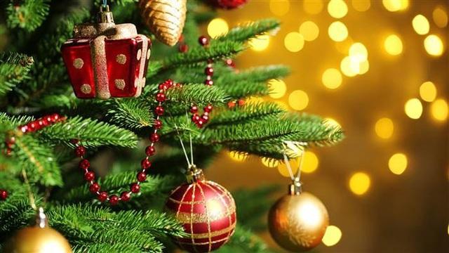 Vì sao lễ Giáng sinh nhất định phải có cây thông? - 3