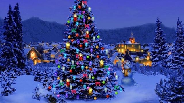 Vì sao lễ Giáng sinh nhất định phải có cây thông? - 1