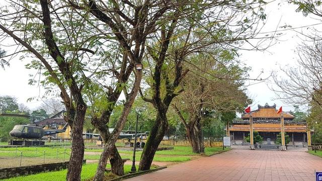 Bảo tàng Lịch sử Thừa Thiên Huế nằm trong khu đất Quốc Tử Giám thuộc Trung tâm Bảo tồn Di tích Cố đô Huế