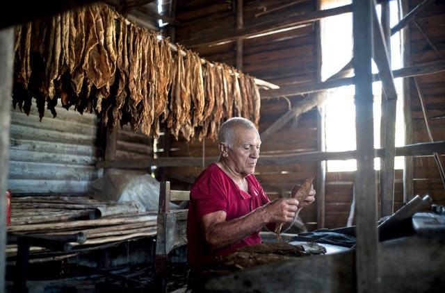Cigar quấn tay của một nghệ nhân ở Cuba