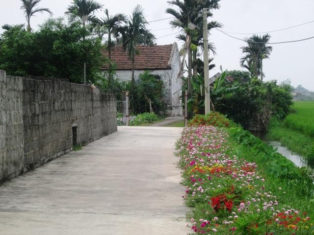 Bê tông hóa đường nông thôn nhưng nơi đây vẫn giữ được nét thanh bình làng quê vốn có