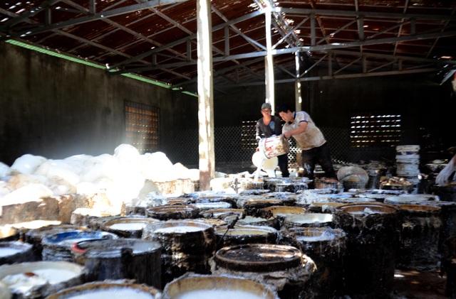 Làm việc trong môi trường độc hại nhưng công nhân, nhân viên vẫn bị nợ lương và bảo hiểm nhiều tháng