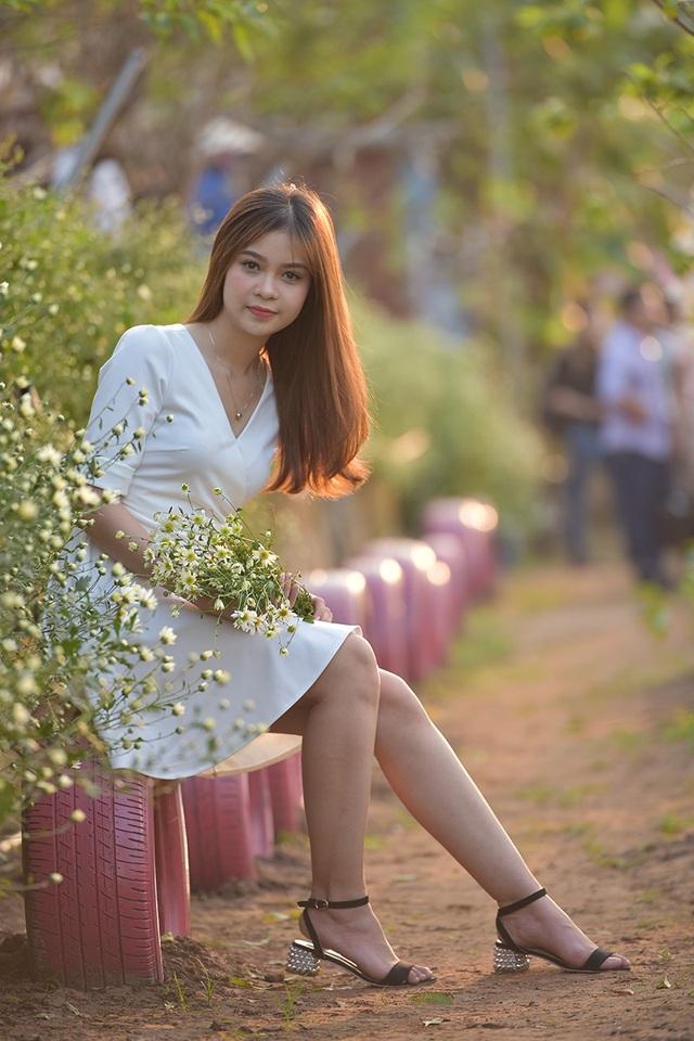Cúc hoạ mi là loại hoa đặc trưng của mùa thu đông Hà Nội. Loài hoa này rất được các cô gái ưa chuộng. Hiện nay, xu hướng chụp ảnh, ngắm cúc hoạ mi đã trở thành thông lệ hàng năm của giới trẻ.