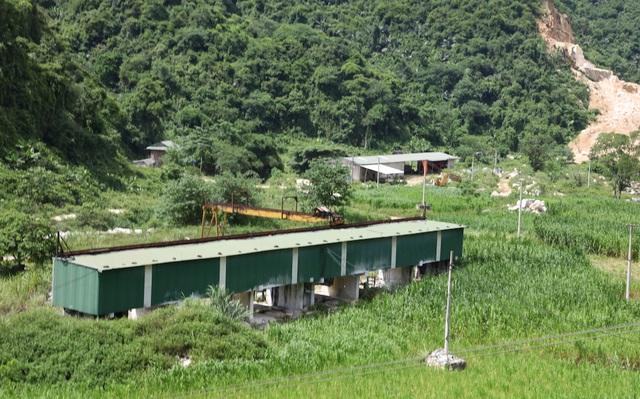 Khu vực sản xuất, cắt đá nay trở thành khu chăn nuôi bò của Công ty đá Phủ Quỳ.