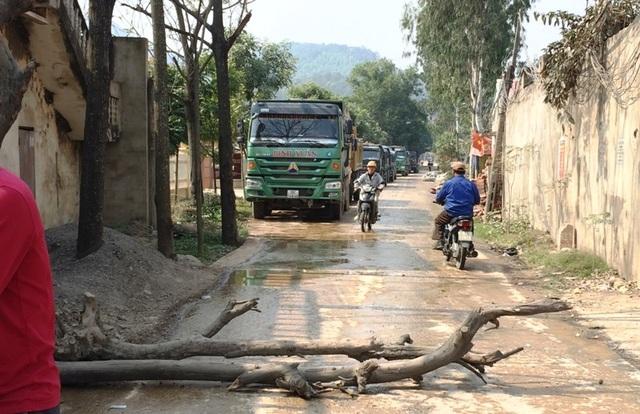 Người dân mang cây ra chặn xe tải do bức xúc vì ô nhiễm