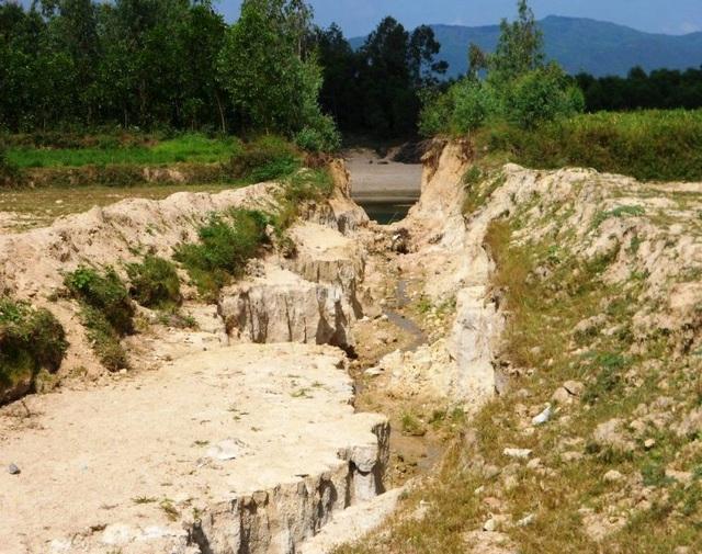 Đất, cát từ mỏ đá Cty TNHH Hoàn Cầu Granite chảy ruống vườn nhà dân và lấp cả ruộng đồng khiến nhiều diện tích trồng lúa không thể gieo sạ