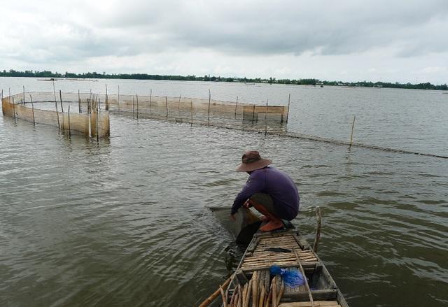 Do An Giang mạnh tay trong việc cấm khai thác cá linh non nên tình trạng đặt đáy, dớn... bắt cá trời cho giảm hẳn (ảnh minh họa)