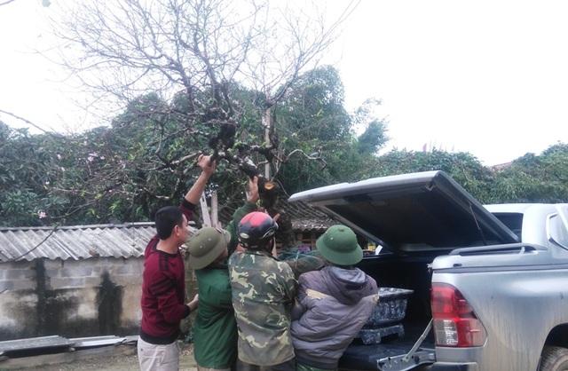 Người dân giúp khách đưa đào lên xe.