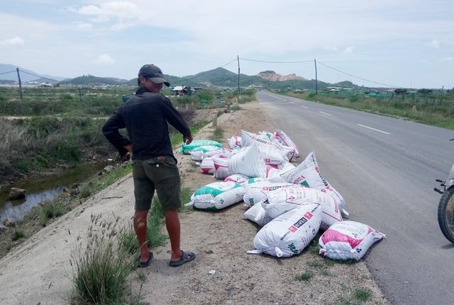 Vỏ ốc chết được người dân đổ vào bì và tập kết bên đường để bán với giá bèo bọt từ 300 – 400 đồng/kg