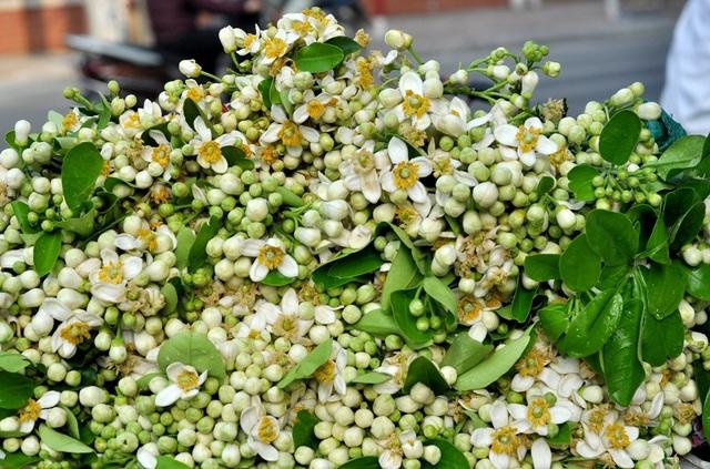 Những gánh hàng rong chở hoa bưởi trắng muốt tỏa hương thơm dịu làm nên nét chấm phá rất riêng cho Hà Nội