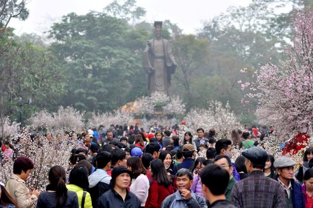 Mặc dù thời tiết mưa lạnh, nhưng Lễ hội hoa anh đào diễn ra tại chân tượng đài Lý Thái Tổ, cạnh Hồ Gươm (Hà Nội) vẫn thu hút hàng nghìn lượt khách tham quan, trong đó có rất nhiều du khách là người nước ngoài.