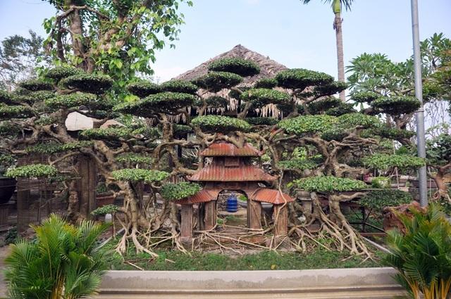 Một cây sanh cổ thụ được thiết kế với tiểu cảnh gợi giống như một bức tranh về làng quê Việt.