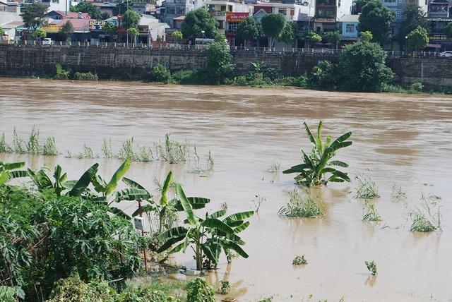 Lũ lớn đổ về trên thượng nguồn sông Hồng - 2