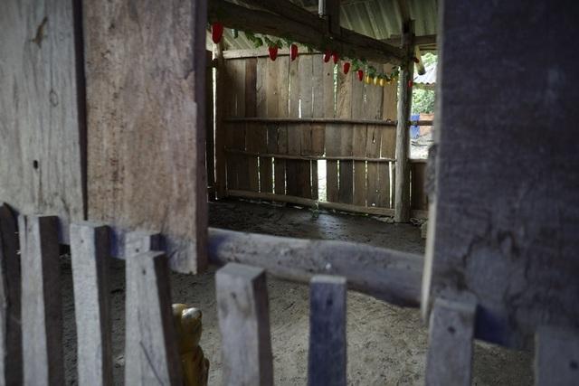 Một phòng học tồi tàn ghép bằng gỗ tạm tại điểm trường Ta Lếch, thuộc trường mầm non Mùn Chung (xã Mùn Chung, huyện Tuần Giáo, tỉnh Điện Biên) hiện tại