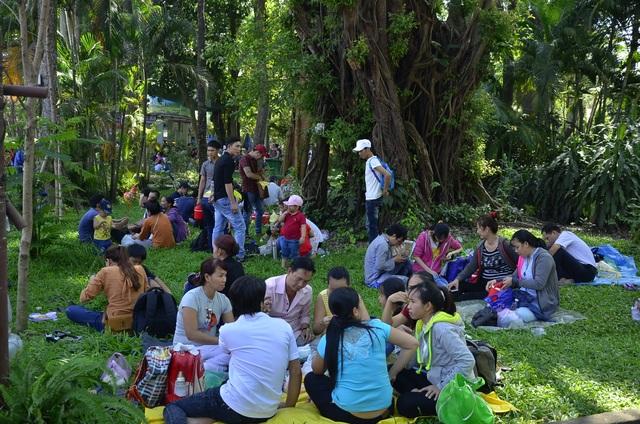 Nhiều người dân sau khi tham quan, vui chơi quanh công viên, họ nghỉ chân, tổ chức ăn uống ở ngay trên các bãi cỏ xanh.