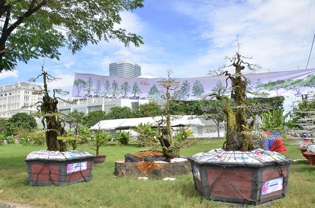 Cặp khế bạc tỷ của nghệ nhân đến từ Tây Ninh lại hội ngộ tại Hội hoa xuân Phú Mỹ Hưng (quận 7, TPHCM) năm nay
