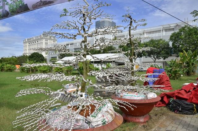 Cặp kim quýt. Theo nghệ nhân Ba Hùng kim quýt là cây cực kỳ chậm lớn, để có được cặp cây như trong ảnh là không dưới 200 năm.