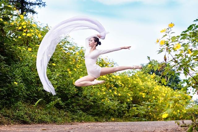 Ngọc Bích phiêu vũ đạo giữa sắc vàng rực rỡ của loài hoa dã quỳ.