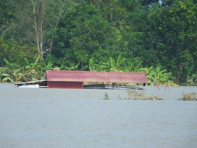 Lũ lụt đã khiến hàng chục nghìn ngôi nhà bị ngập