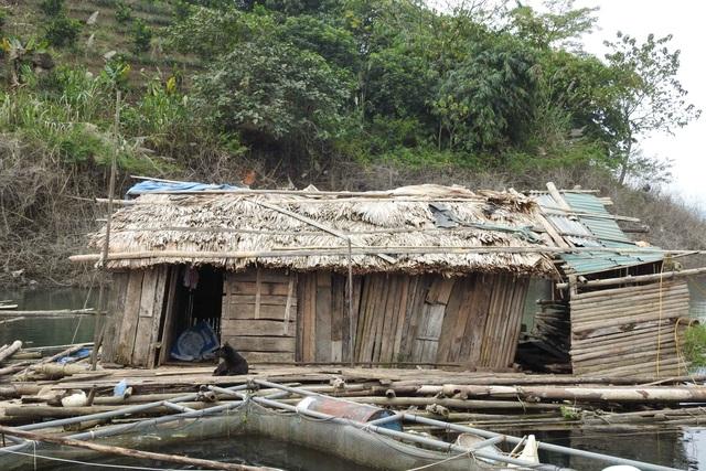 Cả 2 cái nhà lợp tạm bằng tre nứa này là nơi sinh sống của vợ chồng anh Vui