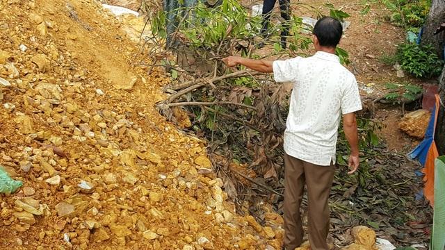 Nhiều cây tràm lớn của ông Phạm Quốc Hùng cũng bị lấp