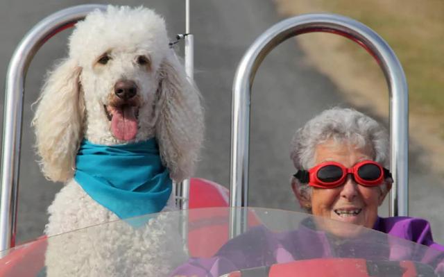 Mắc ung thư giai đoạn cuối nhưng cụ bà 91 tuổi vẫn quyết định chu du cùng gia đình bên chú có cưng