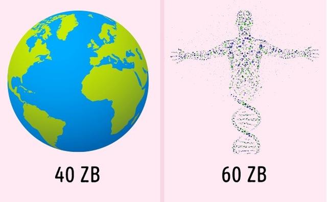 Con người thật kỳ diệu khi so sánh với máy móc qua 9 khả năng này - 4
