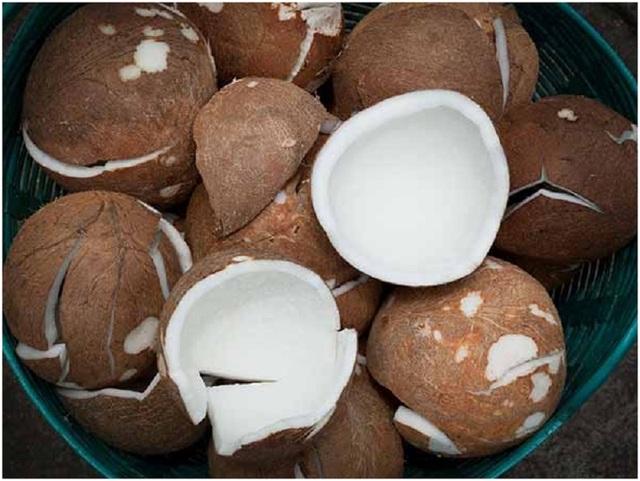 Lý do bạn nên ăn dừa khô - 1