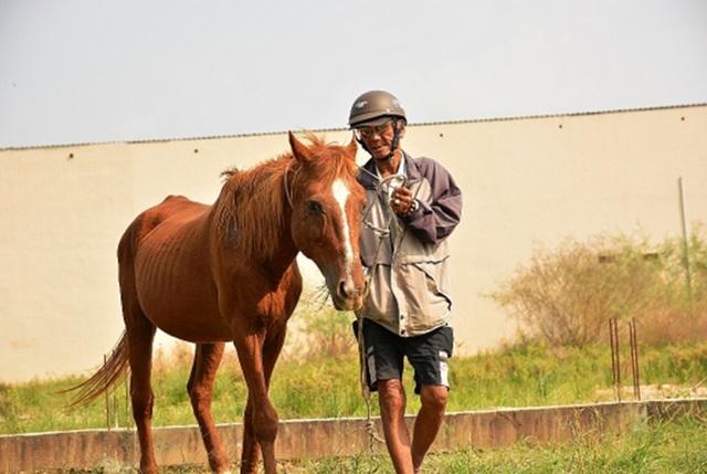 Ký ức vàng son của trường đua ngựa tại Sài Gòn - 3