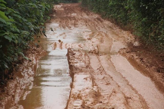 Có đoạn bùn sâu gần 0,5 m, khiến nhiều phương tiện qua đây rất khó khăn
